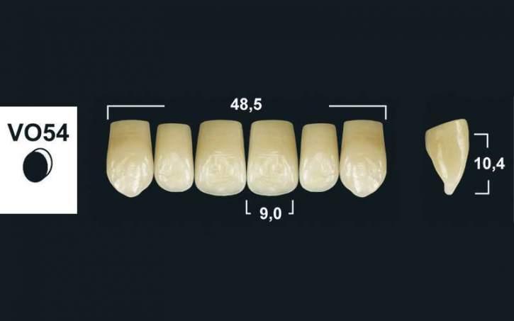 TRIBOS 501 Kunststoffzähne VO54-OK-A2